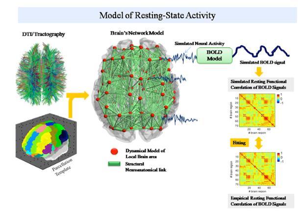 The Virtual Brain: Scalable Brain Simulation
