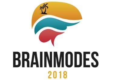 brainmodes2018.png