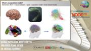 VIDEO: Population Models in The Virtual Brain (TVB) and the Phase Plane