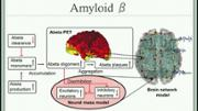 VIDEO: Linking molecular pathways and large-scale computational modeling to assess candidate disease mechanisms and pharmacodynamics in Alzheimer's disease